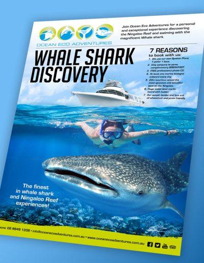 Ocean Eco Adventures